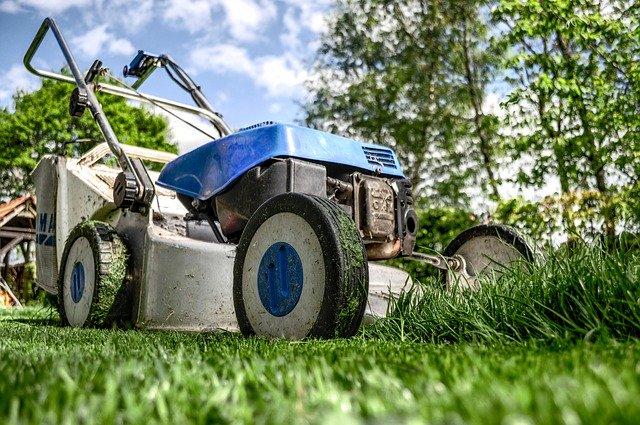 gräsklippare olika gräsmattor